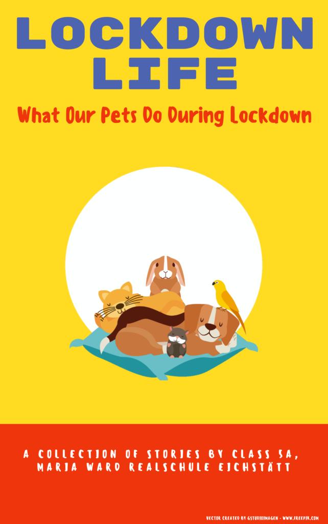 Lockdown Life – Ein Buchprojekt der Klasse 5a